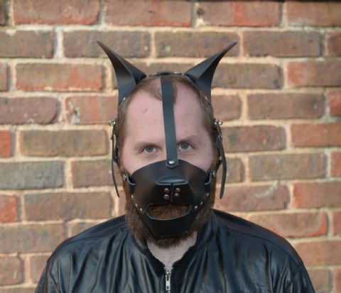 Pet-Play Head Harness with rigid ears (Pup play / kitten play / animal role play)
